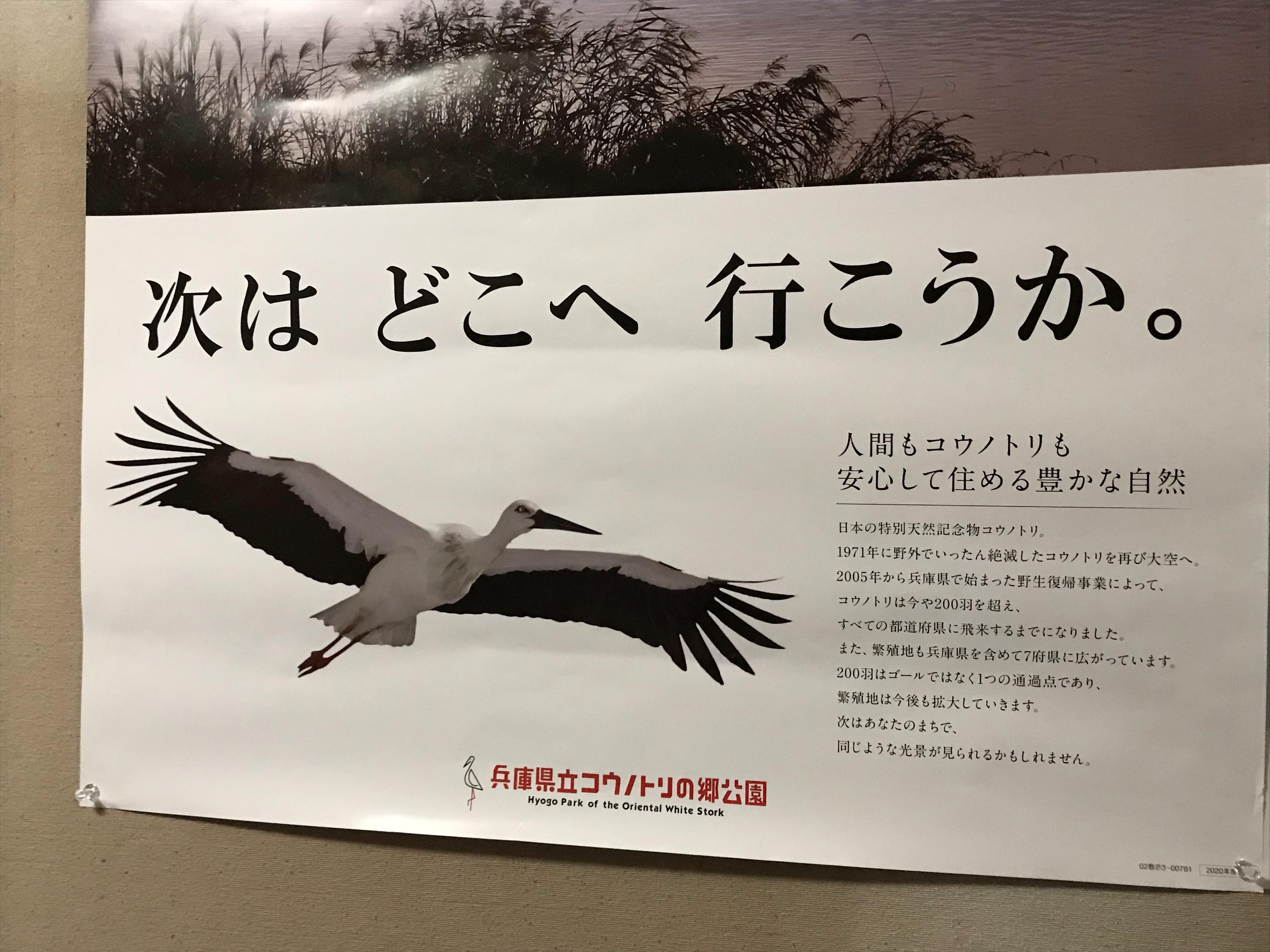コウノトリのポスター